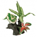 Decor planta acvariu 20 cm 89401